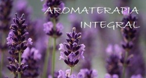 AROMATERAPIA lavender 4